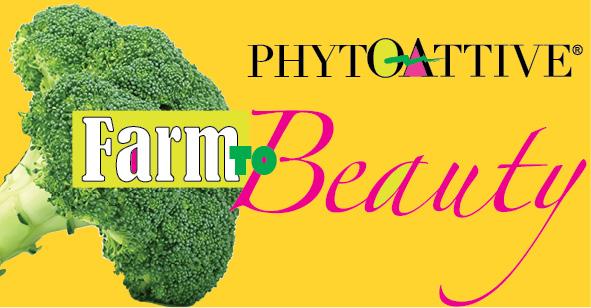 http://www.phytoattive.com.br/