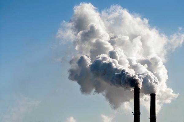 L'Oréal pretende zerar emissões de carbono até 2050