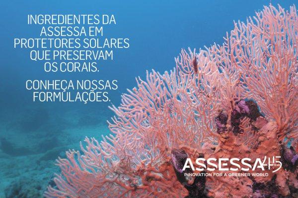 A combinação de CARBOGREEN QB, PLUGIN BMS e HYPSKIN em Protetores Solares que preservam os corais