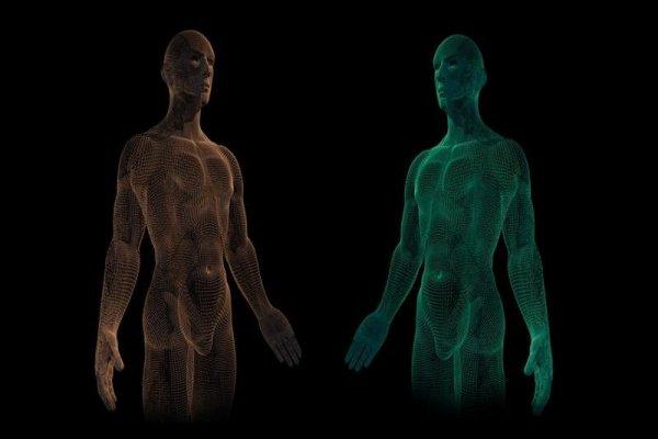 BASF e CTIBiotech criam pele humana reconstruída em 3D que inclui macrófagos imunes