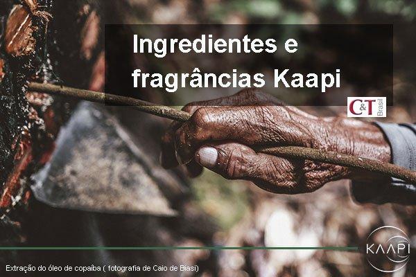 Ingredientes e fragrâncias Kaapi