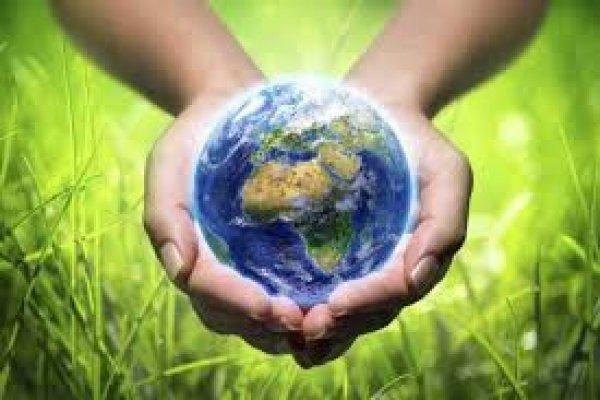 Natura entre as empresas mais sustentáveis do mundo
